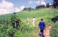 Summer 2001: our first sight of the land